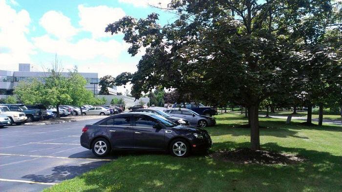 Hiền Toyota Một số mẹo làm mát xe giữa trời nắng đỉnh điểm